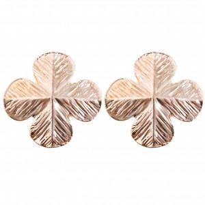 Bijuterii Alloy pair earrings